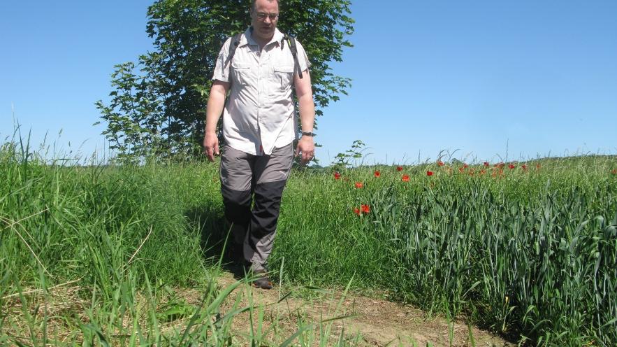 Royal Military Canal walk- June 2014