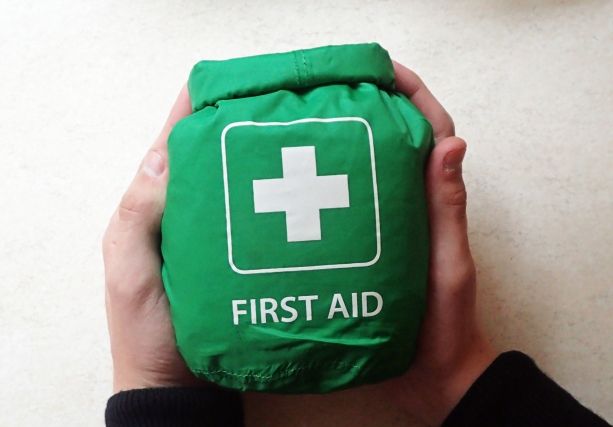 A fairly large First Aid kit that will provide most of what is necessary for a small groups needs, including children