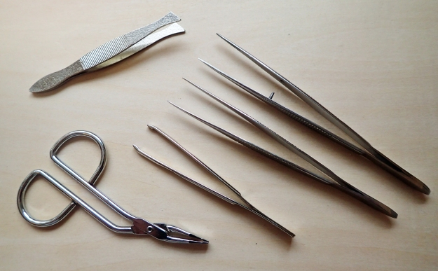 A set of tweezers deserves a place in every First Aid Kit. Having agreed that, it only remains to determine just what to include. Flat ended can be good for obtaining purchase on obdurate splinters, while thin ended can be useful for picking out gravel and debris from a graze, or even, with care and knowledge, for removing ticks. If using a thin nosed pair, take care that the end does not poke a hole through however many layers are placed in their way. Some pocket knives come with a small set of tweezers but many are too small to be of good practical use