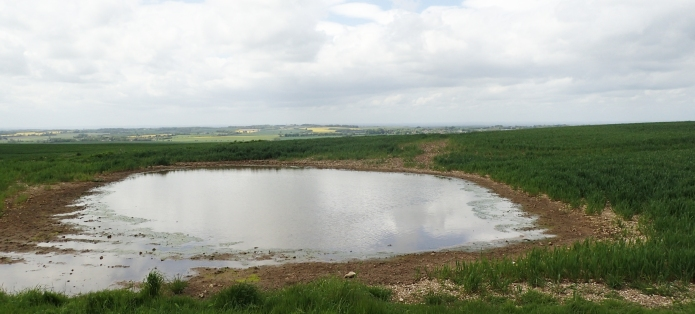 Dew ponds are situated at many points along The Ridgeway. Many are now restored and have butyl liners so no longer dry out as frequently as they used to. However water is intended for horses etc., is standing water and likely to be contaminated by animal faeces and is njot recomended for human consumption,even following very necessary treatment and purification