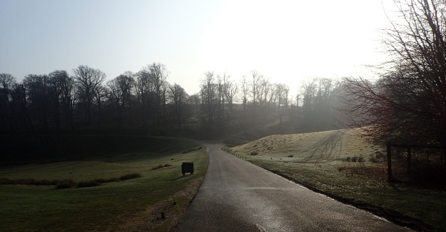 The extensive grounds of Knole Park experienced in the early morning was a delight