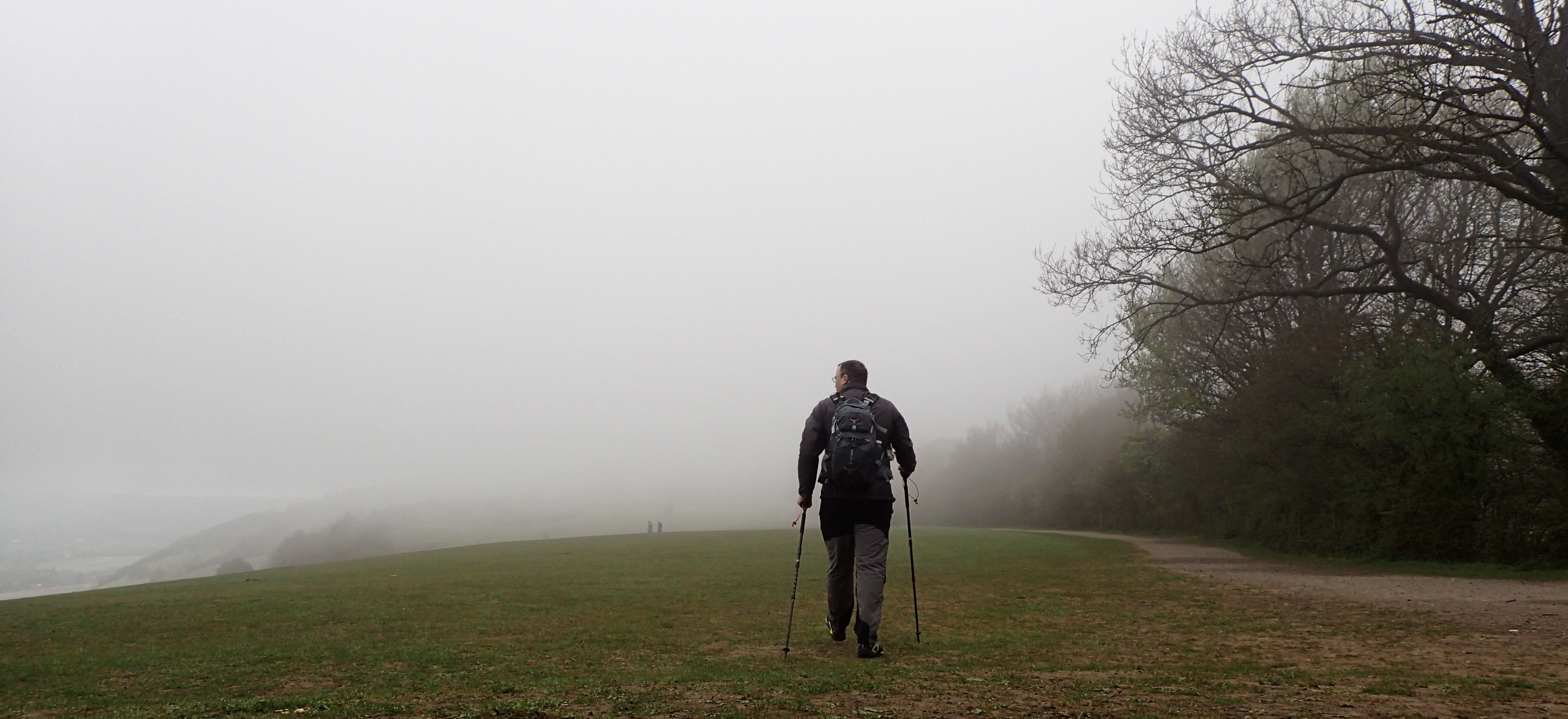Misty mornings in May on the Surrey hills