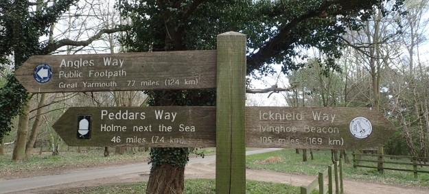 So typical of many National Trails, the Peddars Way and Norfolk Coast Path has an inauspicious start. Setting off from a car park opposite Blackwater Carr on Knettishall Heath