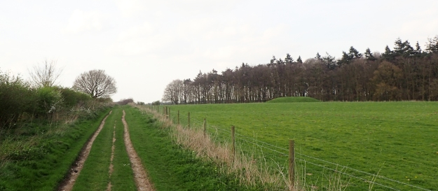 Close to the Anmer-Houghton road, the Peddars Way passes a number of tumuli dating from around 1300 - 1500BC. This is one of Norfolk's most important Bronze Age sites and of national importance