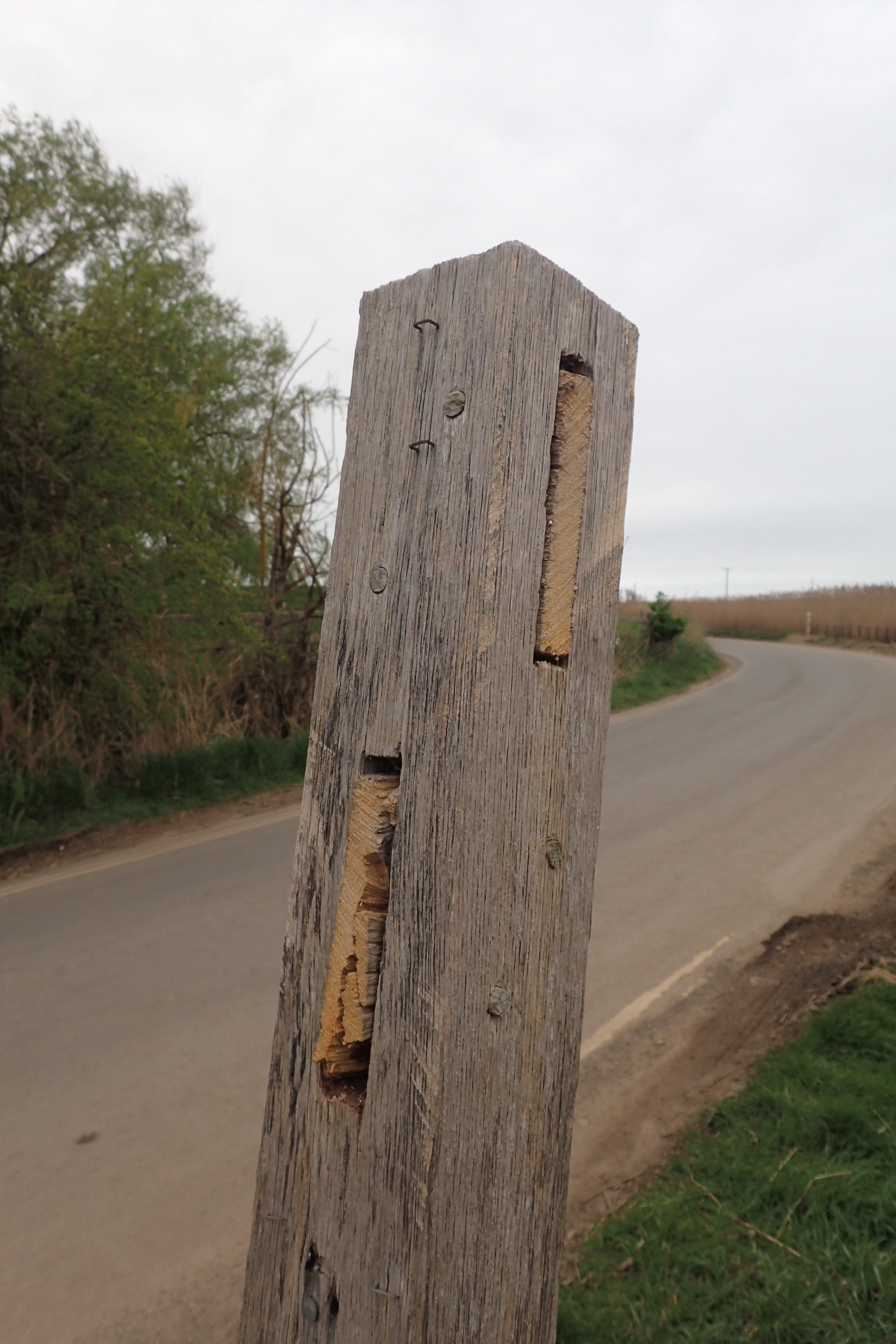 Someone had been playing silly buggers at Brancaster and had sawn off the finger posts. My own fault, I sauntered straight on and needlessly walked a mile and a half out to the point and back