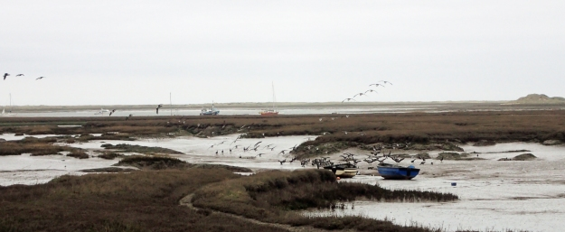 Brent Geese, Shelduck and waders were constant companions