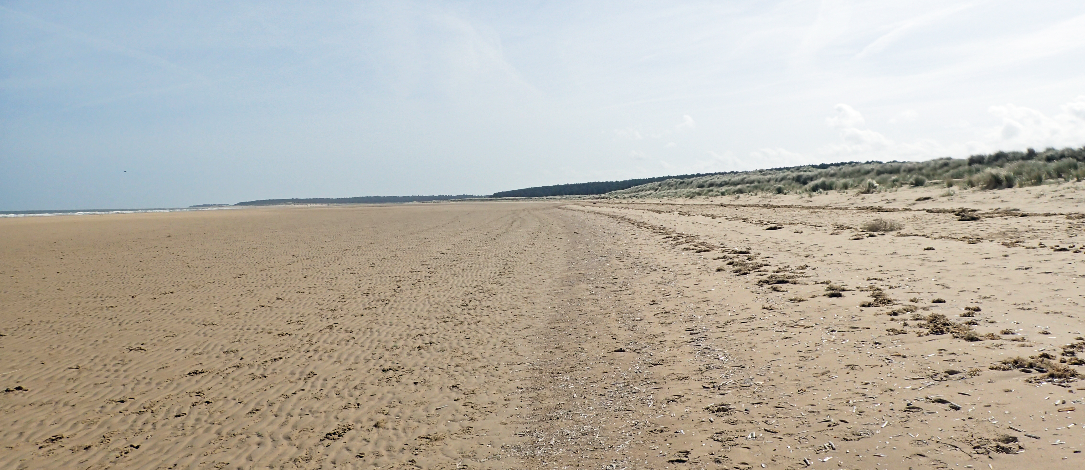 Sandy isolation as I walk towards The Firs at Holme Dunes National Nature Reserve