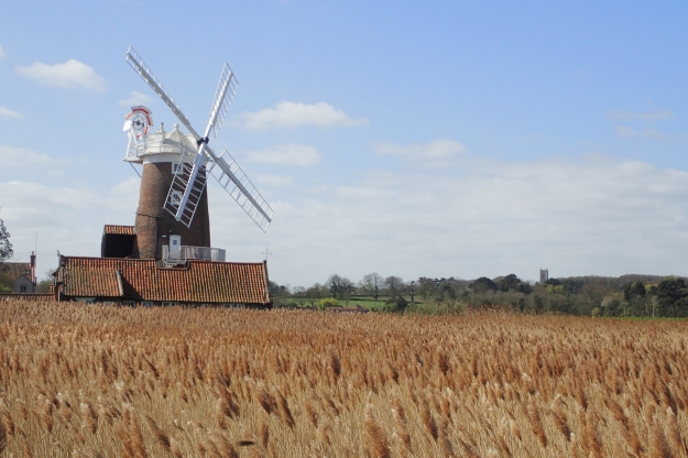 The distinctive windmill at Cley next the Sea can be seen for miles across the marshes. The path goes right past it and I regretted, slightly, not pausing to sketch it