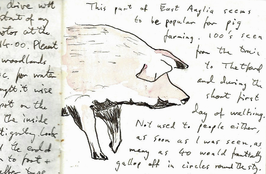 A page from my trail journal