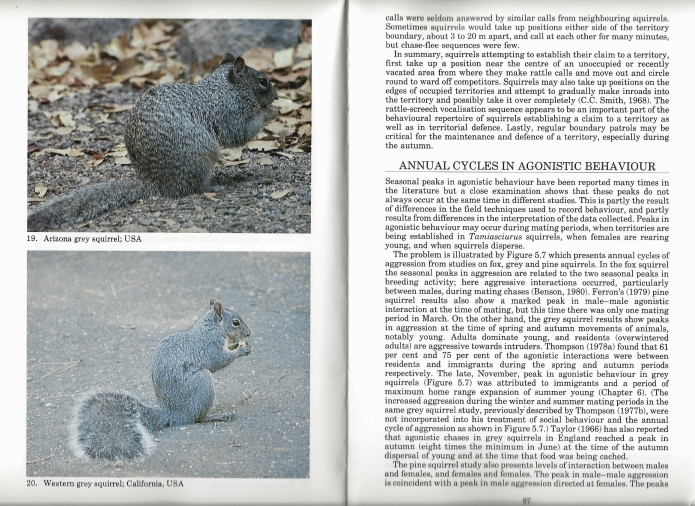 This Helm monograph concentrates on the biology of Tree Squirrels. Not only does it cover the bevioural ecology of the animlas, but also explores the relationship between squirrels and man, covering the contentious issues of management, conservation and pest control