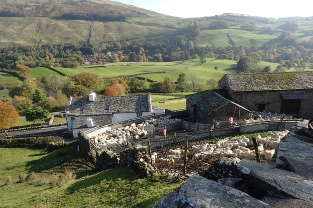 A mixture of farm buildings passed in the Lake District