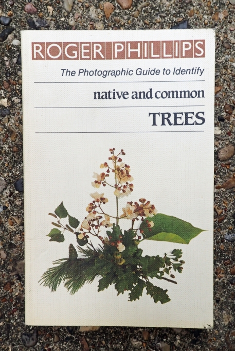 The large photographic guides from Roger Phillips are simply too large to take into the field. However he has also produced some handy pocket sized guides, amongst these was his guide to native and common trees, covering 92 species