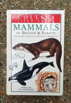 As usual, Collins publish excellent Field Guides to Mammals. Such a volume works brilliantly alongside a good reference work such that by Corbet and Southern