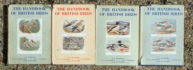 The Handbook of British Birds, (published 1938-41) by HF Witherby et al were masterful works in their time. I have four of the five volumes published. Pioneering as they were, they set a standard that BWP more than supplanted