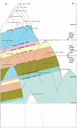 The zonal ranges of Alpine Plants
