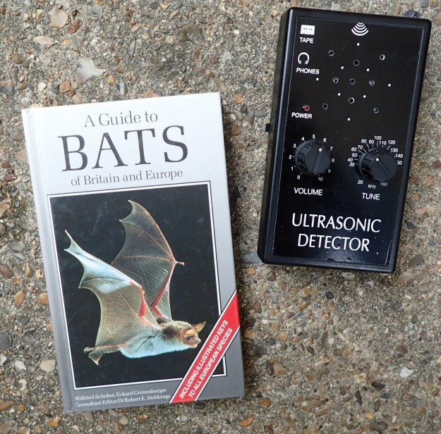 ... and along with a book comes the associated paraphernalia. Who can read any book about bats without wanting a bat detector too!