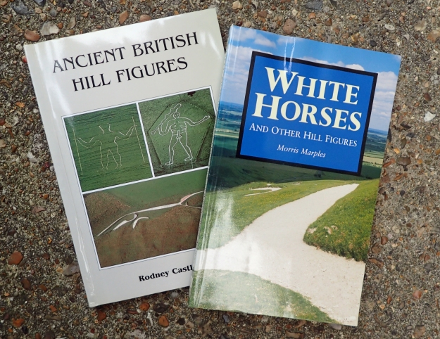 Another two books to consider are White Horses and other Hill Figures by Morris Marples, or Ancient British Hill Figures by Rodney Castleden