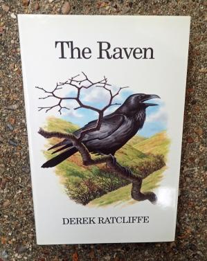 Poyser Bird Monograph- The Raven