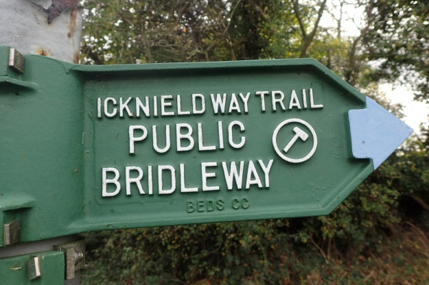 The Icknield Way Trail is quite well signposted for most of its length. Sins seeming to only abandon the traveller when it matters most, or in towns