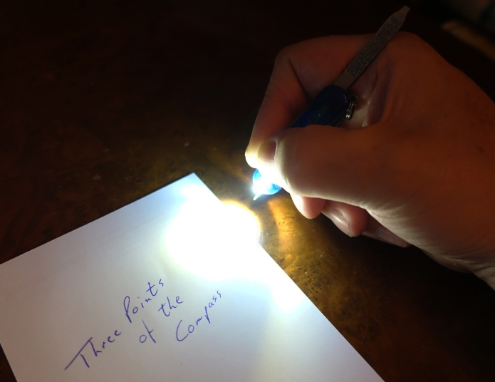 Signature Lite with white LED. Useful for writing with in the dark, if anything the white LED is too bright for this task