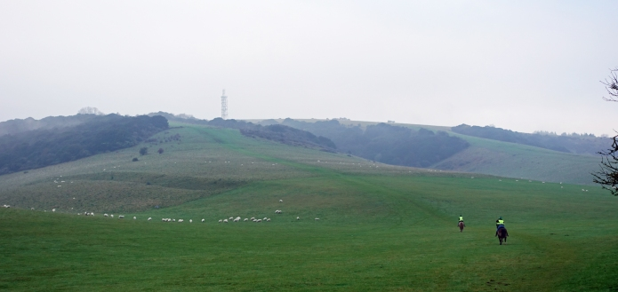 Horse riders gallop up the national trail toward the radio station on Butser Hill