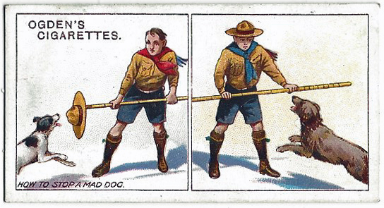 How to stop a mad dog. Ogden's cigarette card