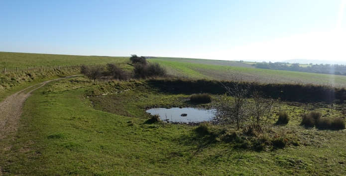 There are a number of dew ponds situated on the top of the rolling South Downs. All are contaminated with animal faeces and filtering and purification is an absolute necessity