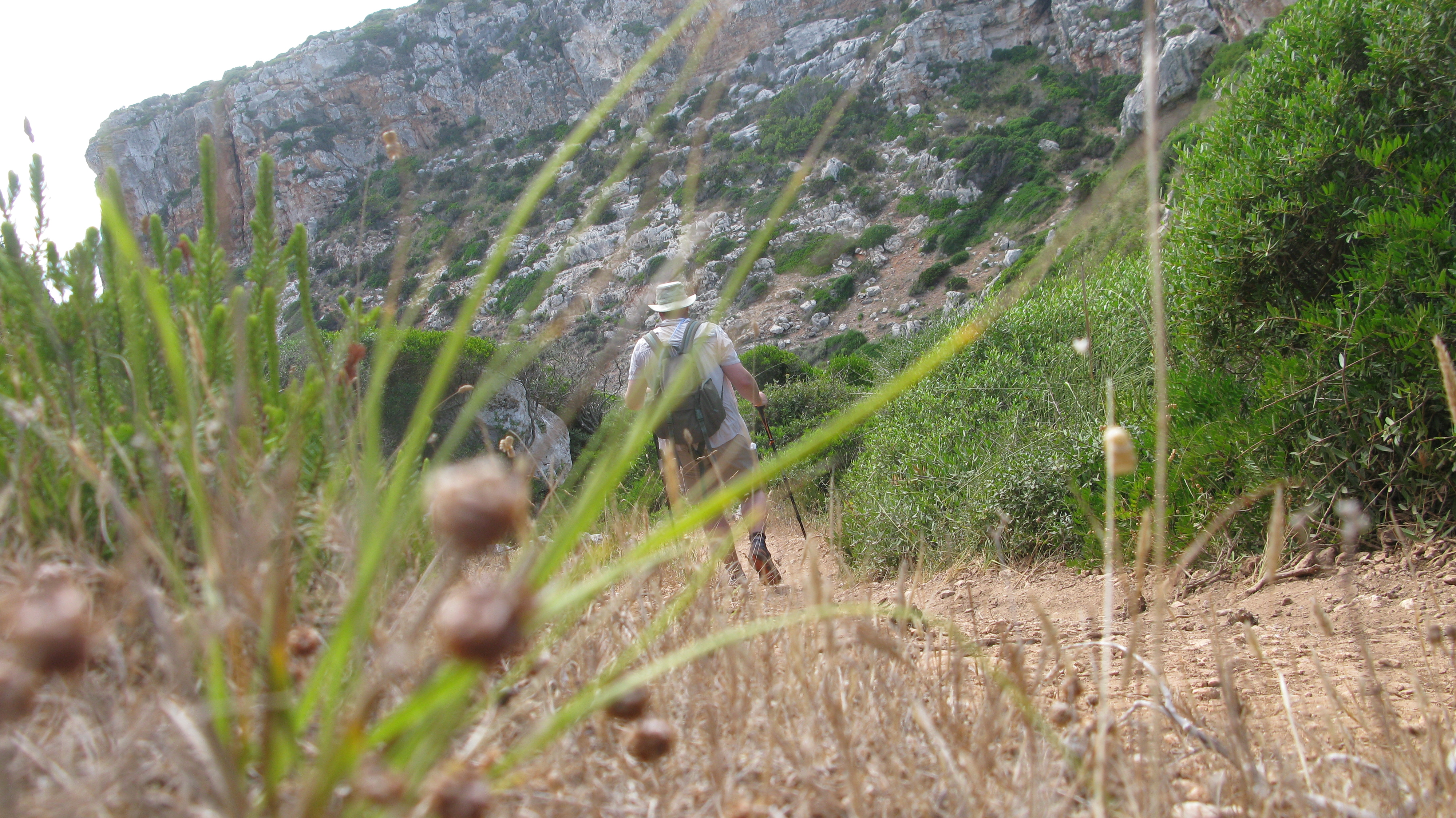 Three Points of the Compass visited Menorca in July, it was mostly hot and dry, as expected. However there is much green vegetation on the dry soils. It gets much drier and browner as the year progresses