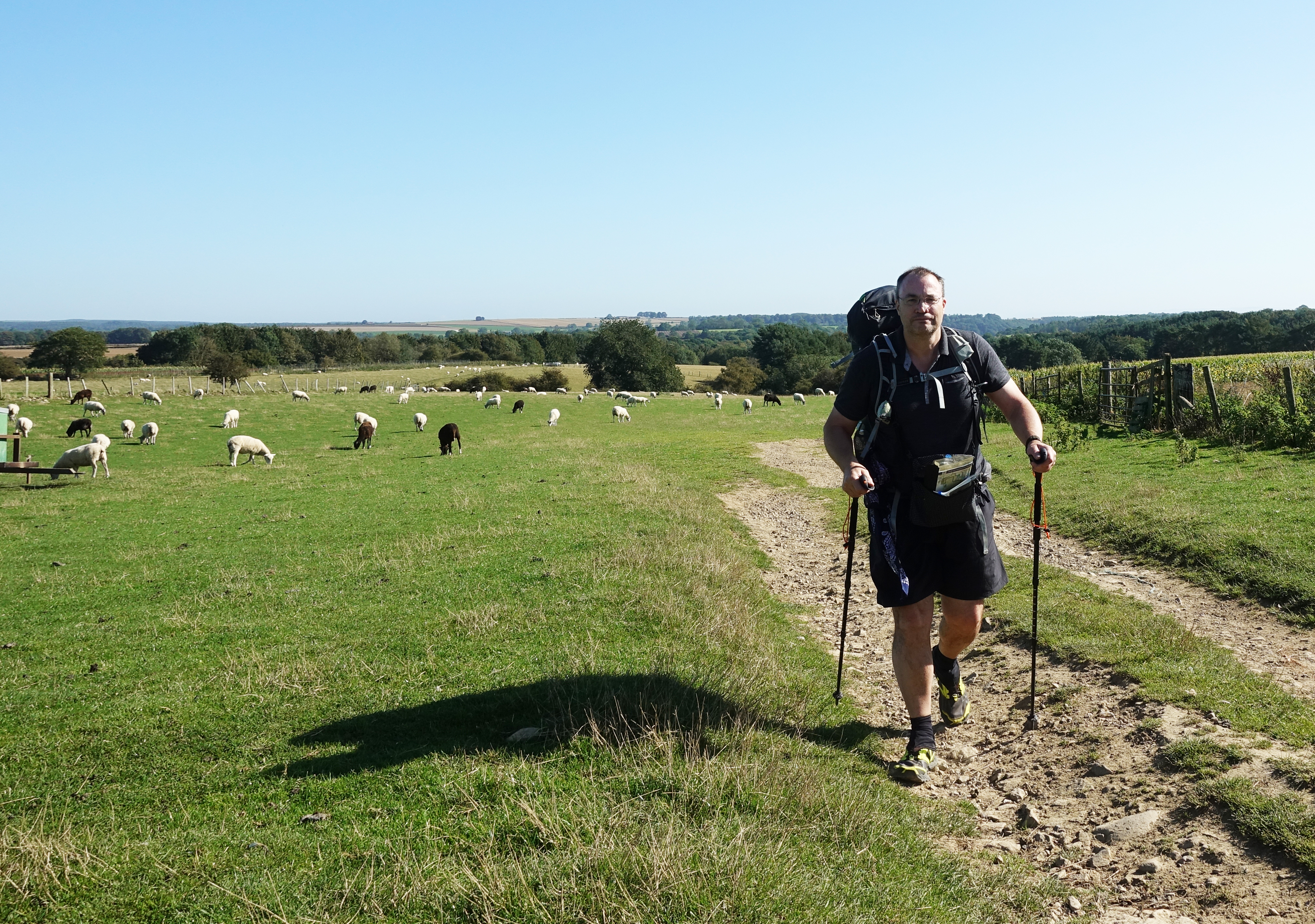 Leaving Helmsley it is easy walking on gentle paths through rural landscape with the moors still ahead