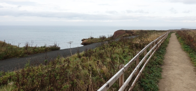 Erosion of the cliffs is constant. Some sections of path have had to be re-routed where the original path has disappeared over the edge