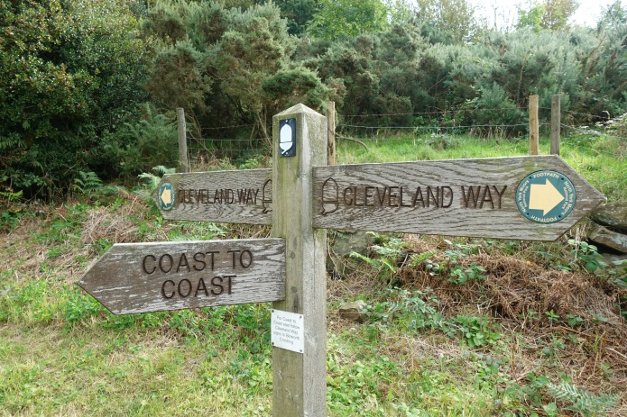 The Coast to Coast joins the Cleveland Way for a few miles of its length and the number of walkers seen increases as a result. Care must be taken to not wander from the correct path