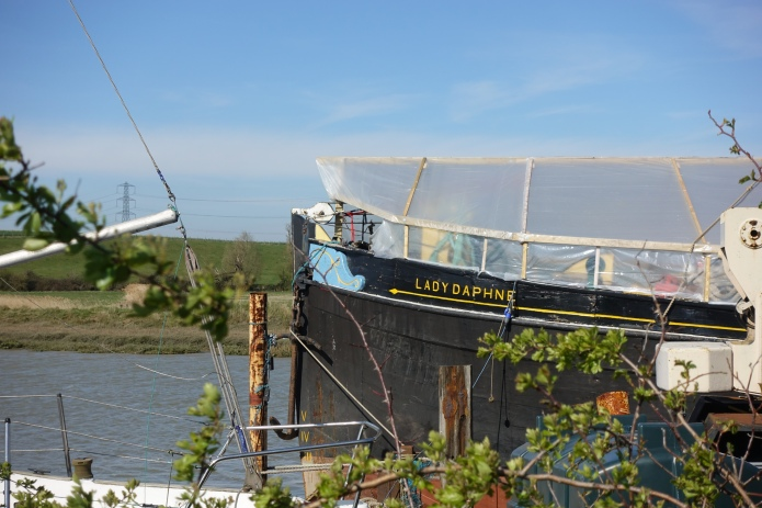 Lady Daphne, Oare Creek
