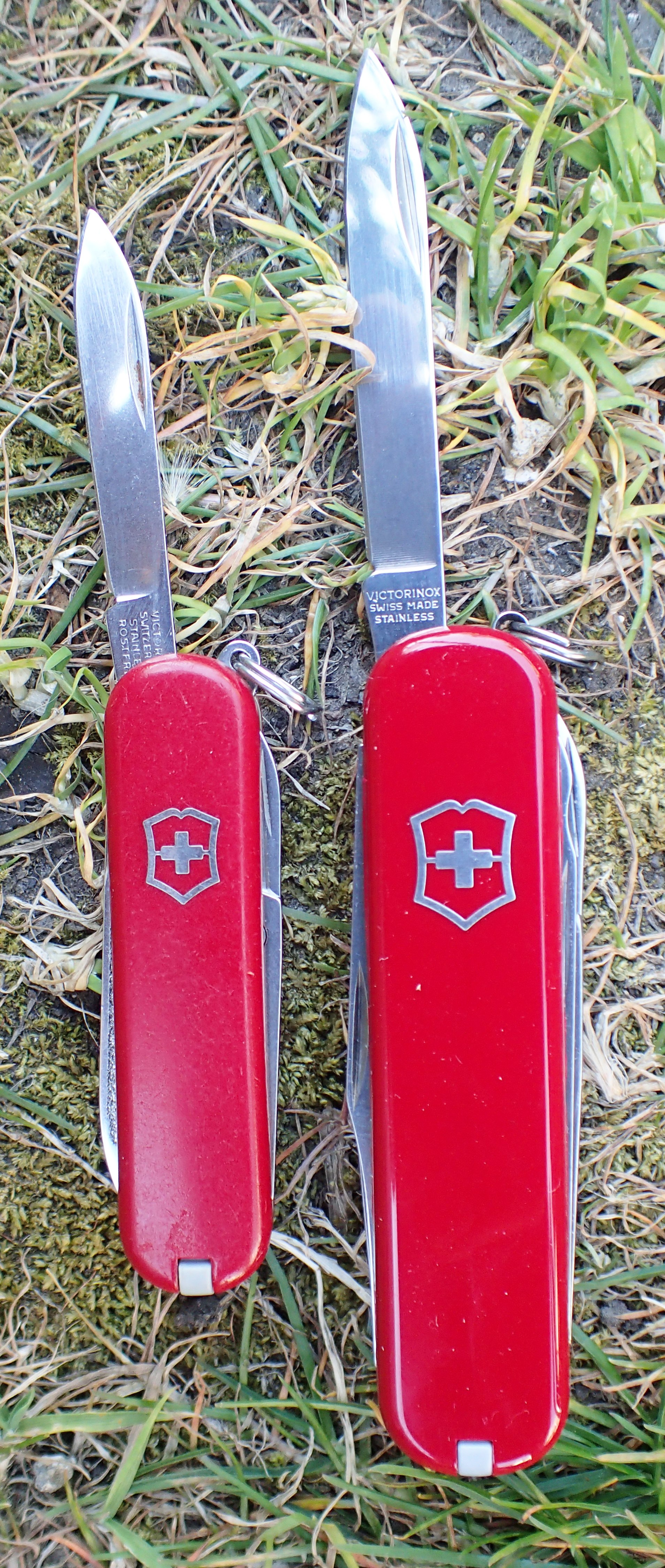 Main blades on Victorinox Classic and Executive compared