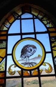 Barn Owl in window of Harty Church
