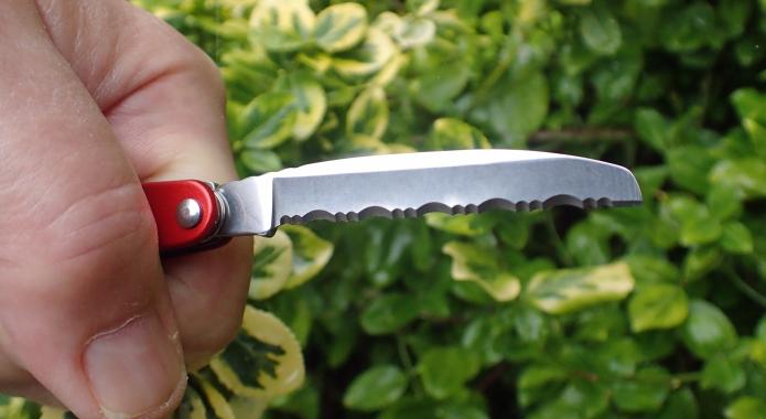 Serrated blade on Juice B2