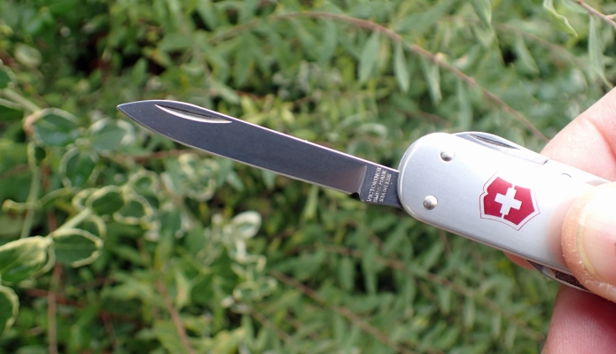 The blade on the Money Clip, though modest in length, is far more practical than those found on the smallest Victorinox knives