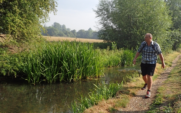 Walking beside the River Darent