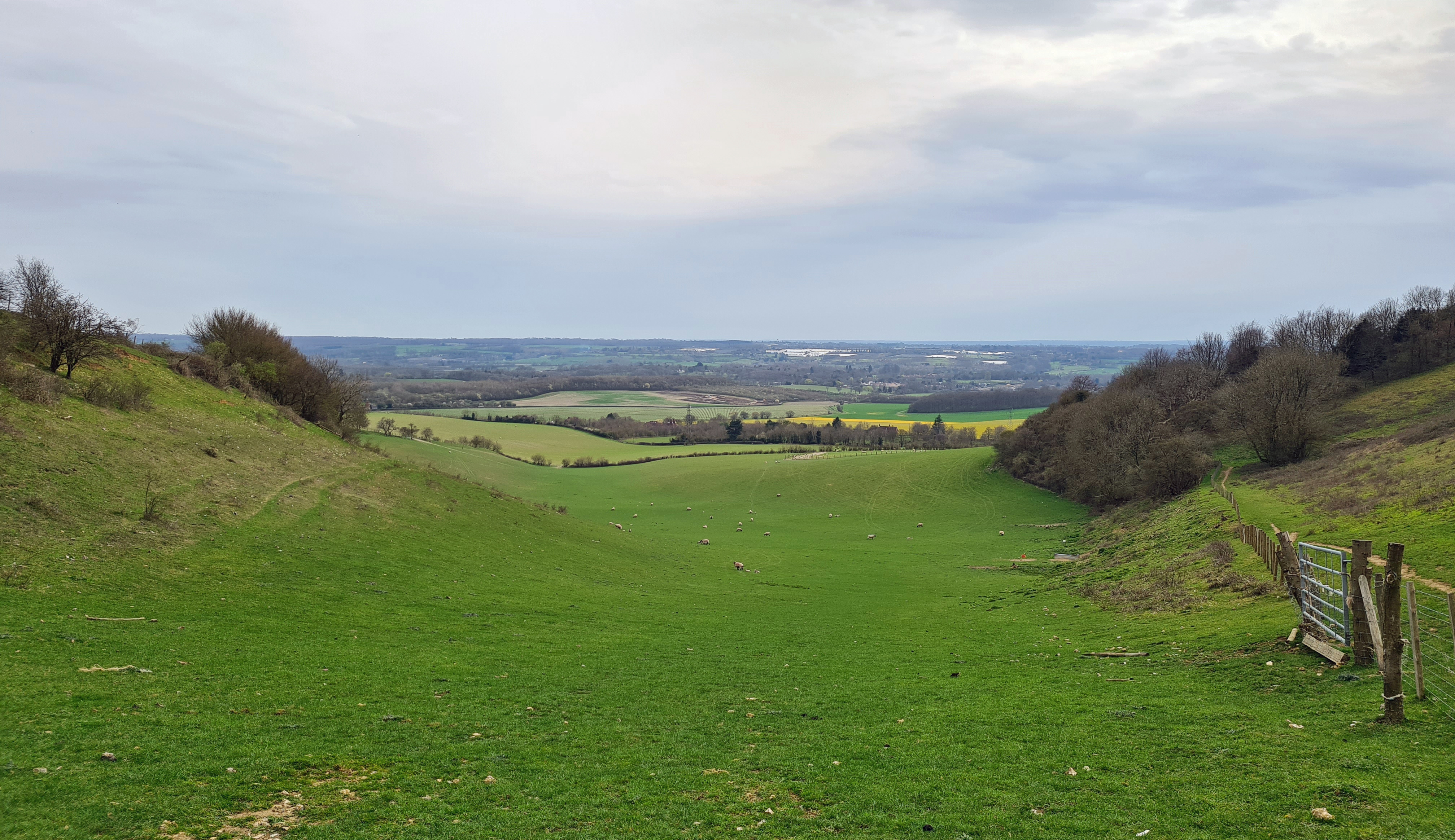 North Downs Way rollercoasters the dry valleys