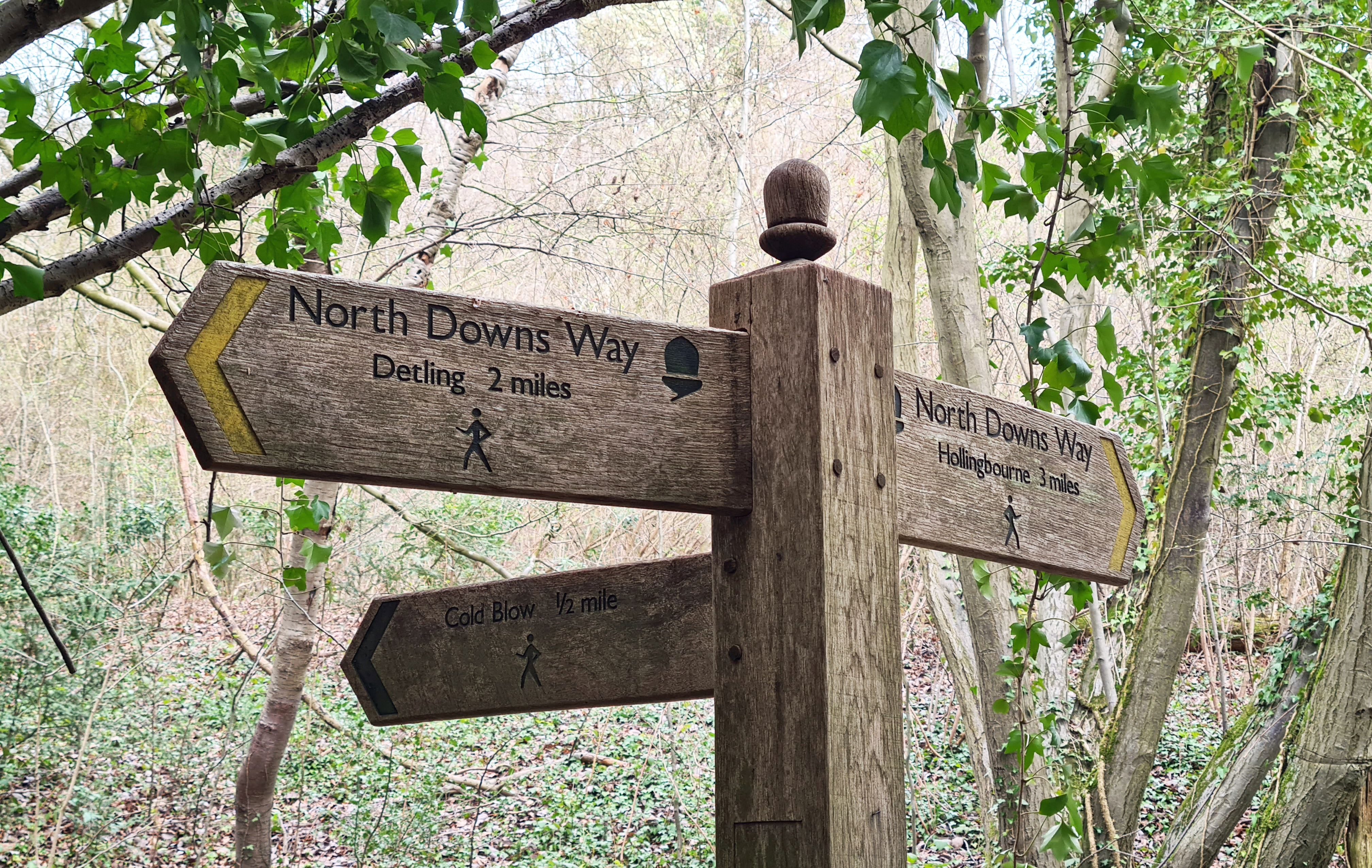 Part of my 'not-so-local local walk' takes in a few miles of the North Downs Way