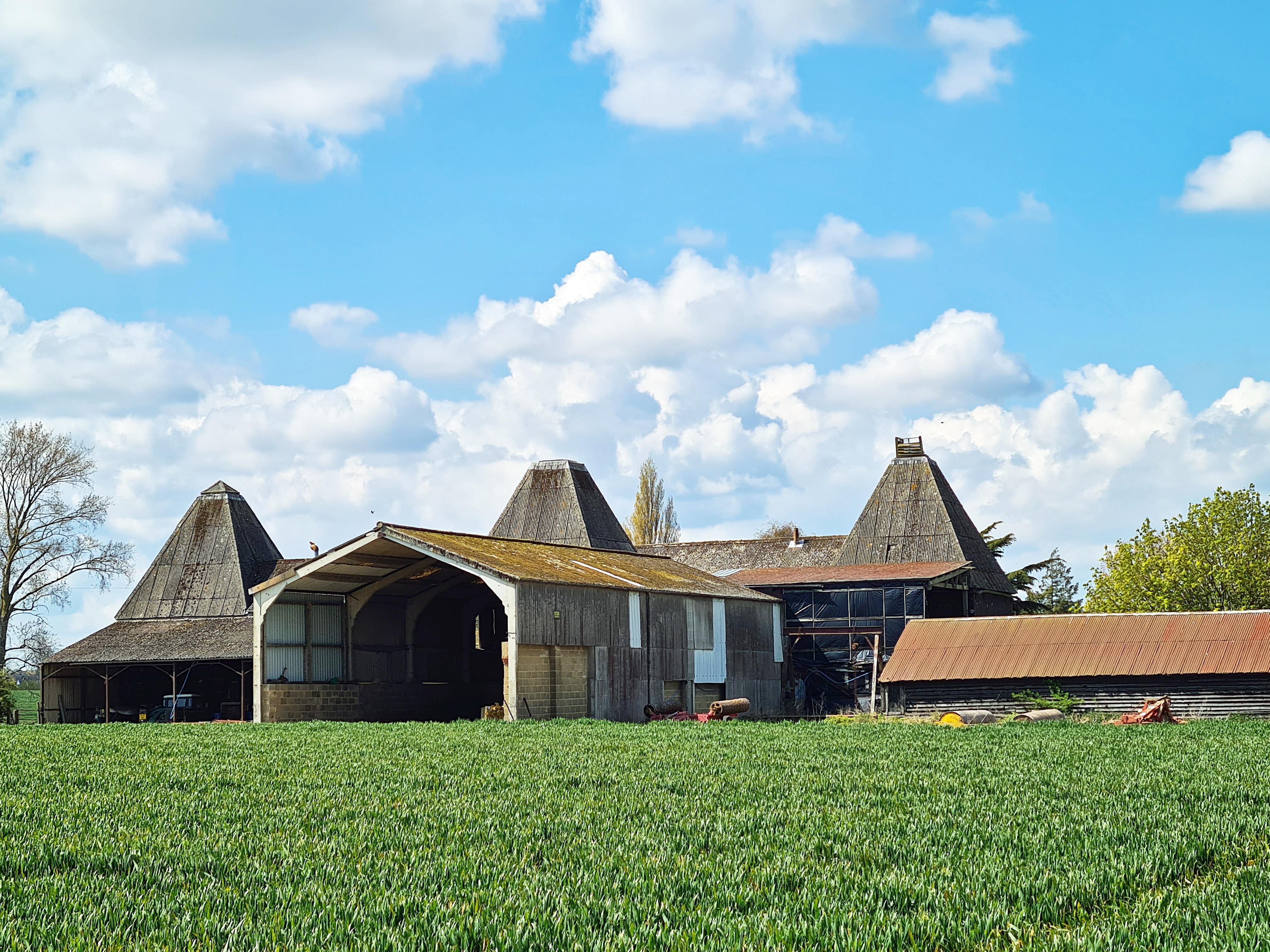 Farm buildings at Luddenham Court