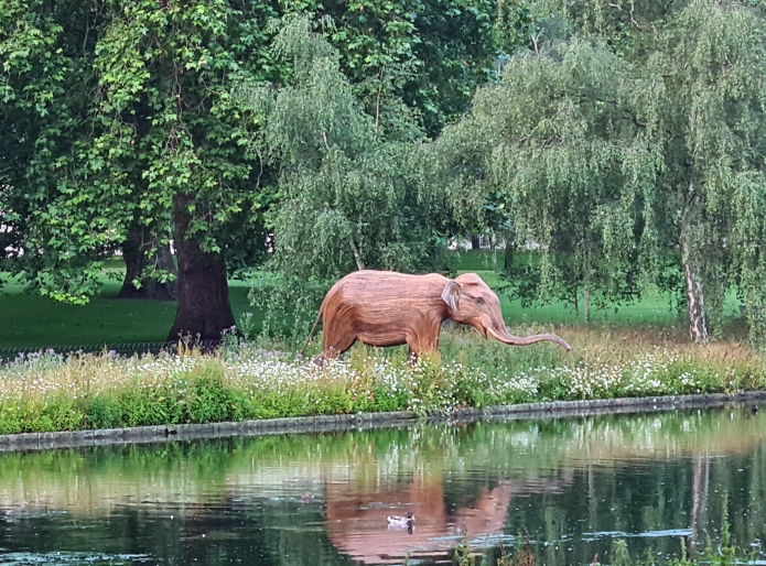 Elephant, seperated from his family, elsewhere in St. James's Park