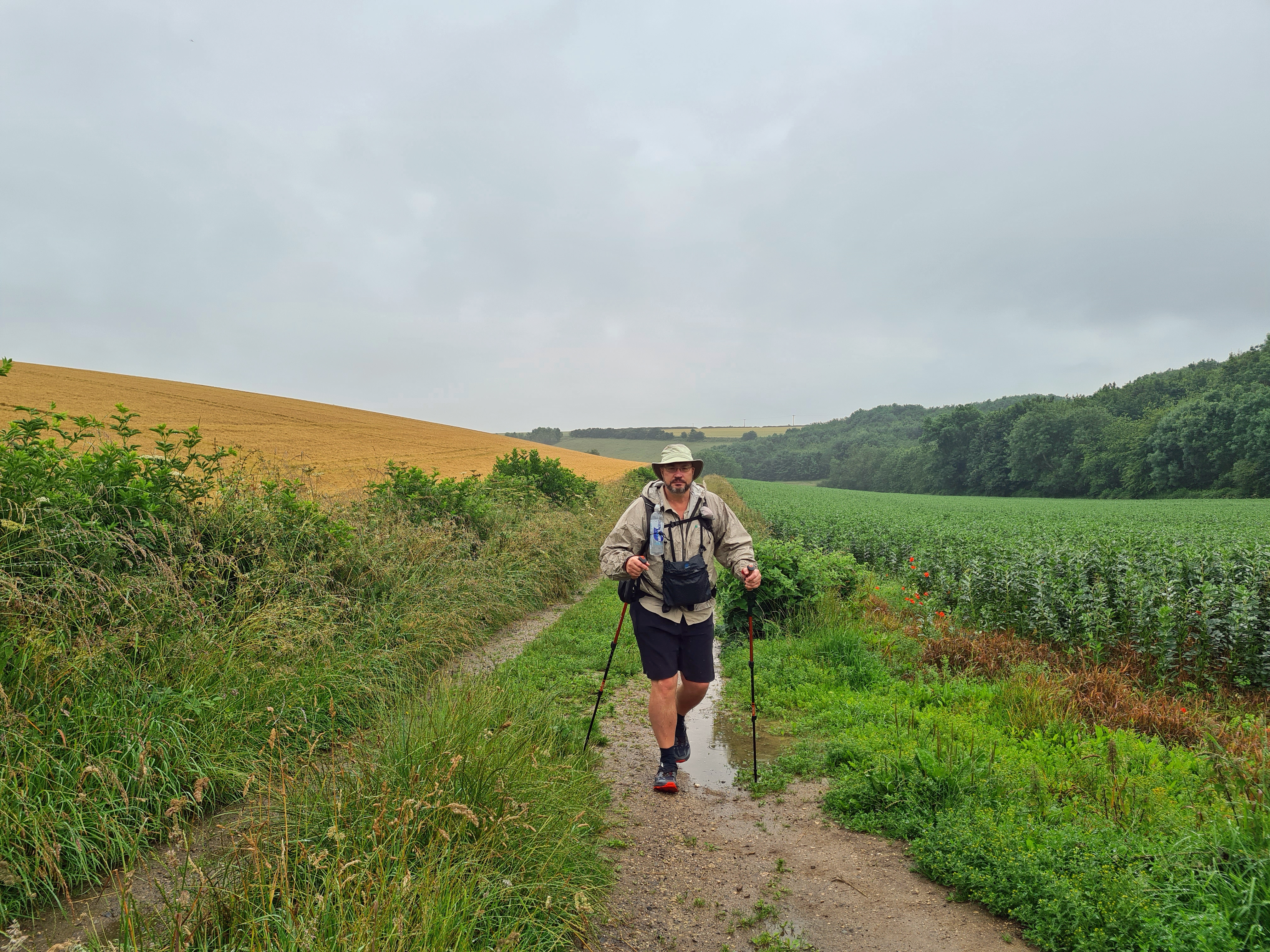My first 'proper' day on trail was a short one as I had broken it's back by getting a few miles in the day before. It was wet and periodically chucked it down throughout my short day's walk. I enjoyed this, keeping cool and comfortable. Decent socks and trail runners are more than adequuated for this walk. A series of agricultural crop fields and a few damp looking sheep are passed for this stretch until ny reaching Goodmanham in time for a late lunchtime pint in the pub there.