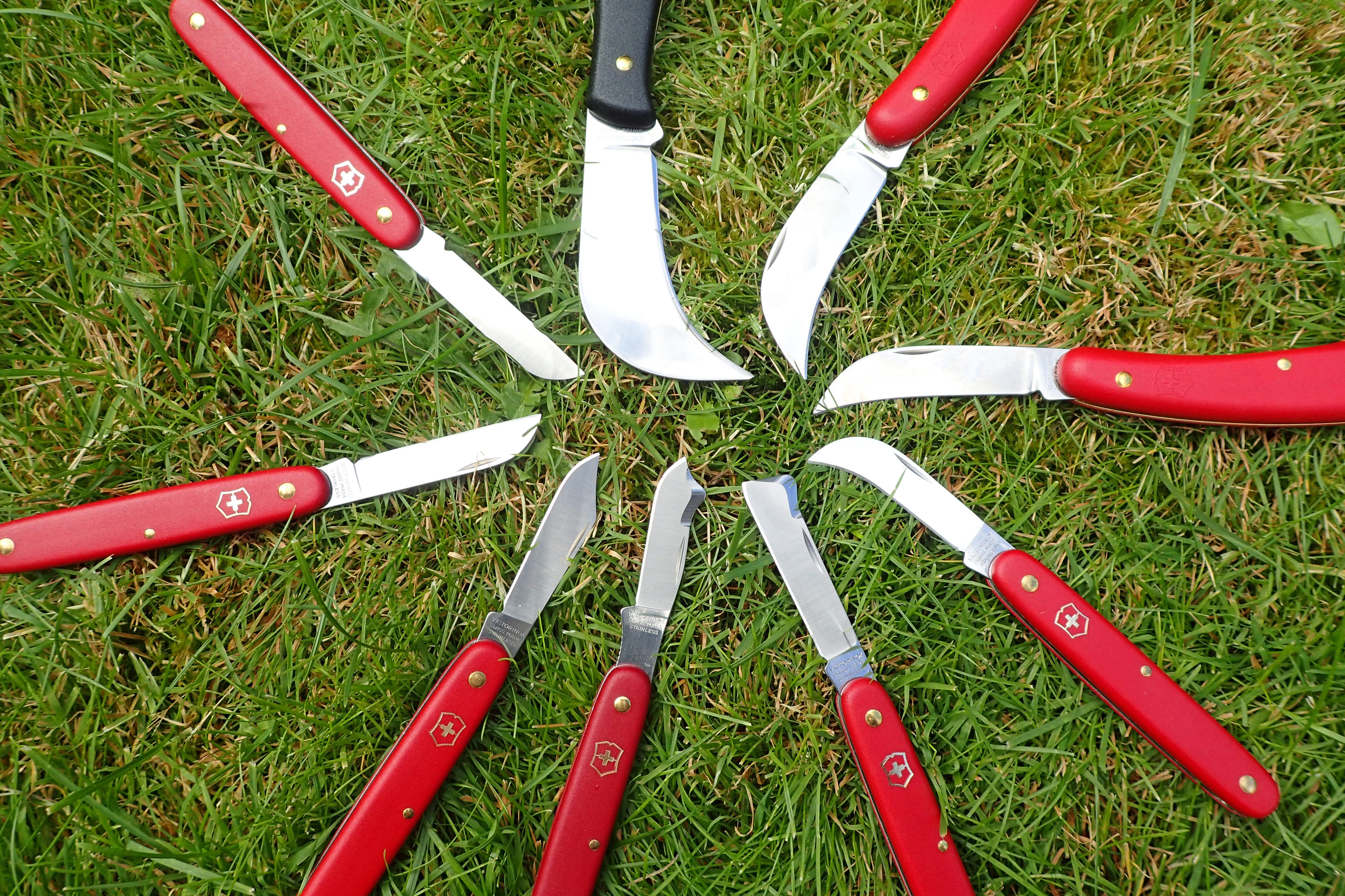 The horticultural knives from Victorinox offer a range of blade shapes and sizes and a smaller range of handle sizes, to suit various tasks