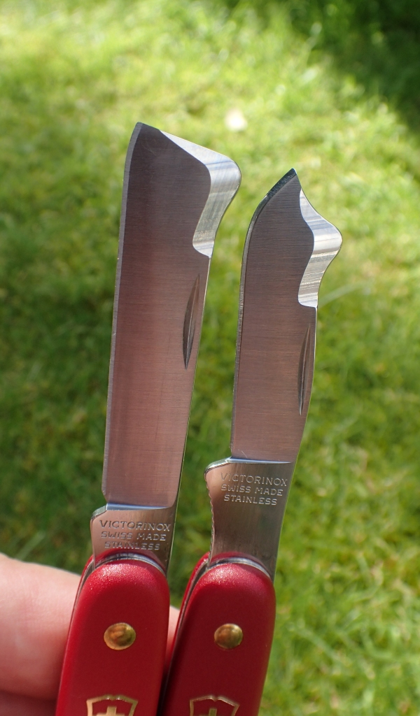 Modified clip point blades