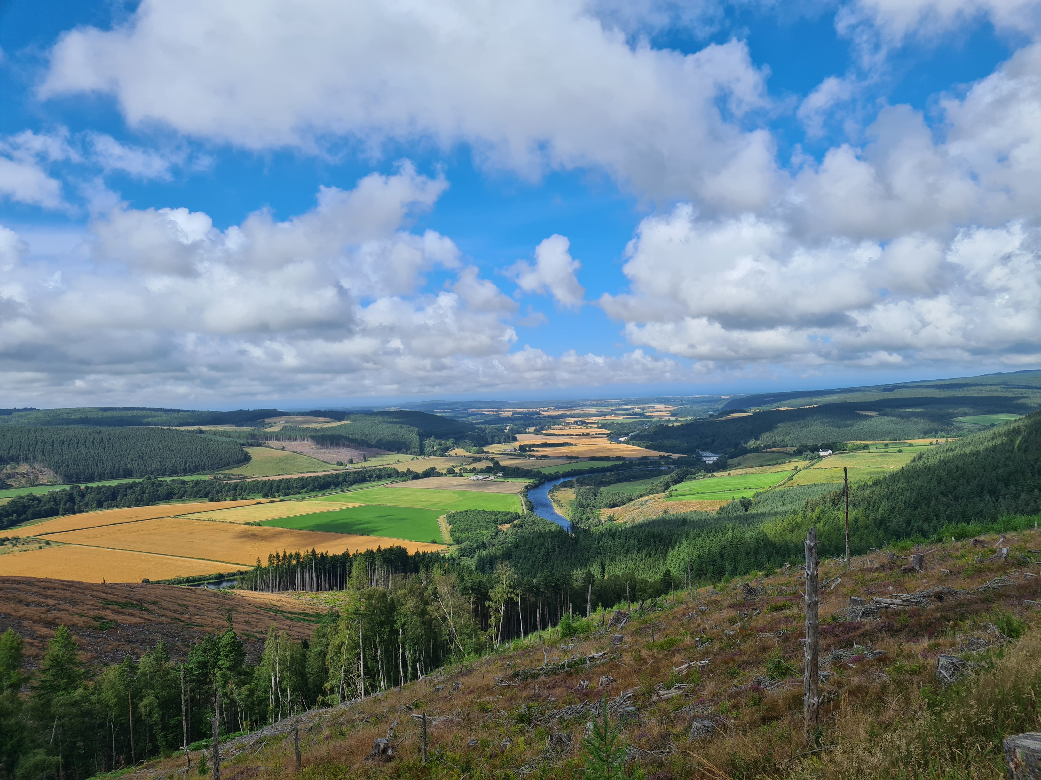From the Wood of Arndilly- the view ahead of the final day's hike to the coast