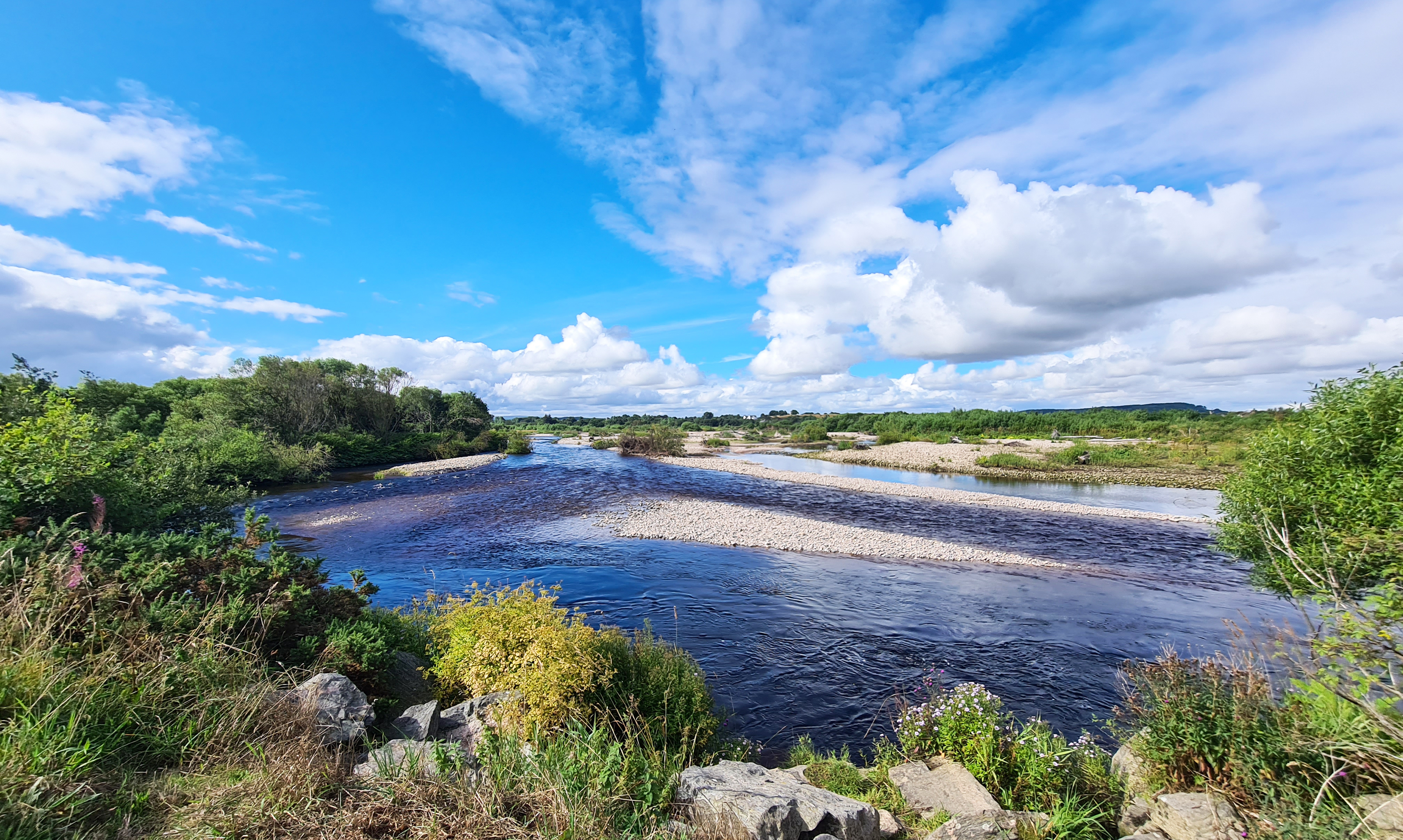 The lasts gasps of the mature River Spey as it reaches the sea