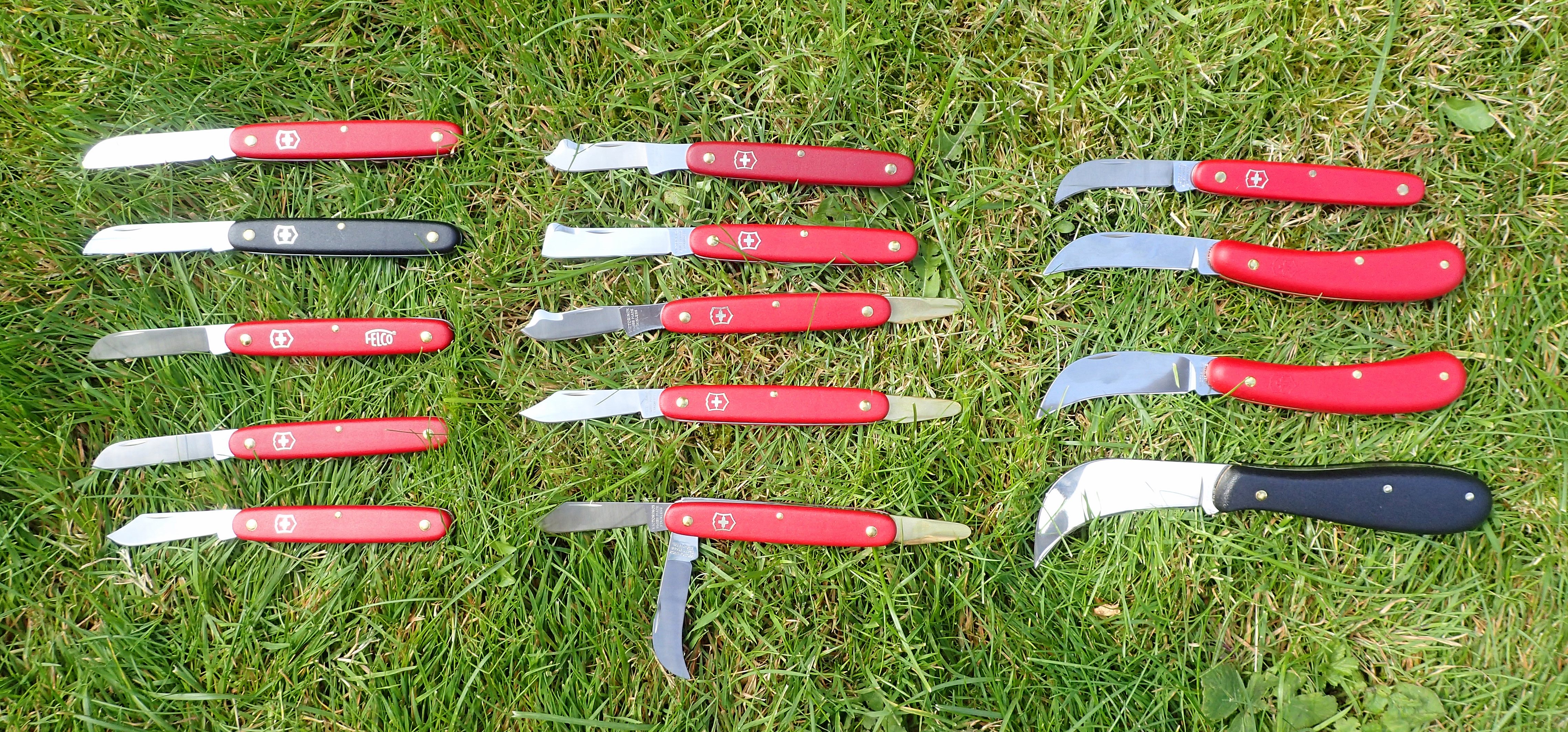 The majority of the range of available horticultural knives from Victorinox